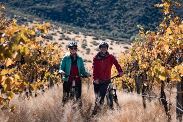 Bike The Wineries Half Day