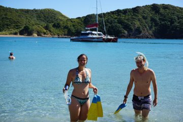 Carino Sailing Trip Bay of Islands with Wildlife Day Cruise